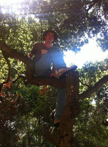 Colin Martin in a tree!